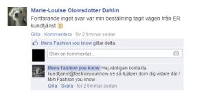 fashionyouknowse_blåst_140410